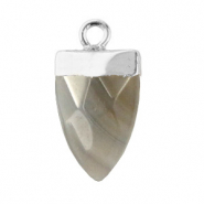Natural stone charms tooth Fossil Grey-Silver