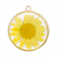Charms with dried flowers Gold-Yellow