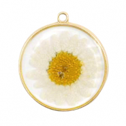 Charms with dried flowers Gold-White