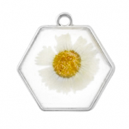Charms with dried flowers hexagon Silver-White